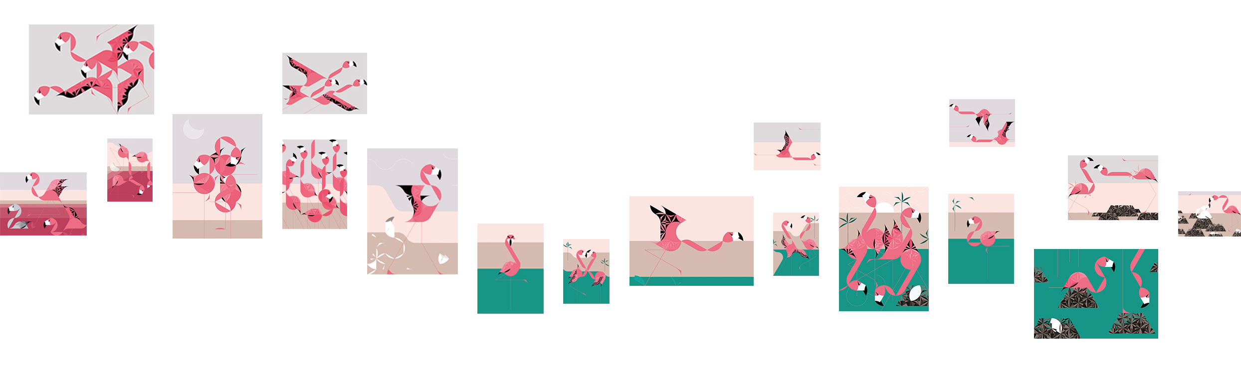 DÉCOLLAGE | FLAMINGOS